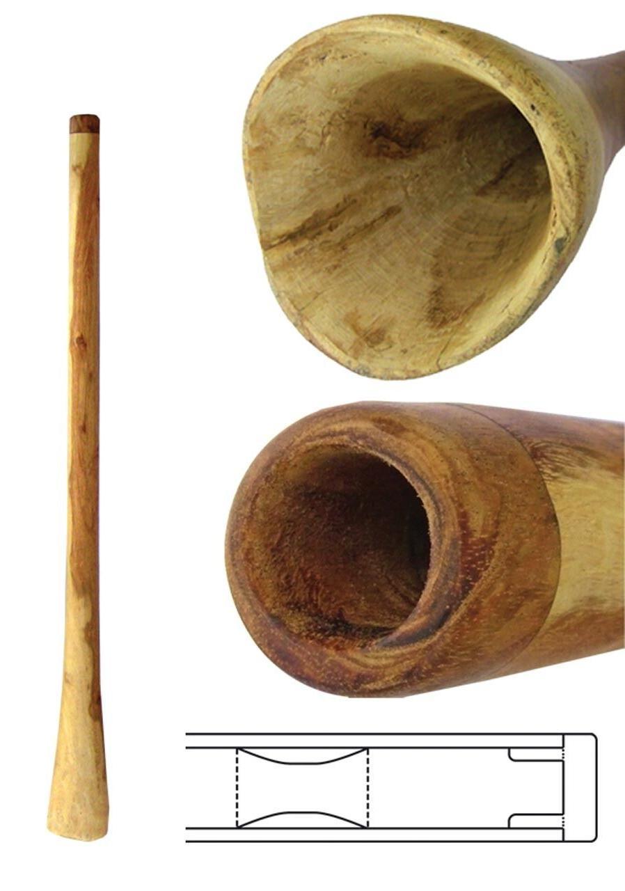 didgeridoo eucalyptus 50 inch