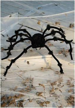 Seasons Posable Crafty Spider Decoration, Assorted, 50""
